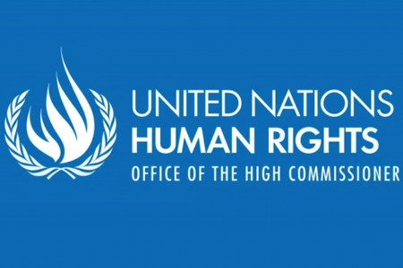OHCHR lofo and text blue