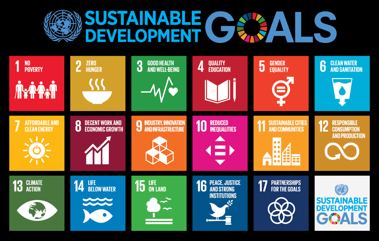 Submission to the High-Level Political Forum on SDGs